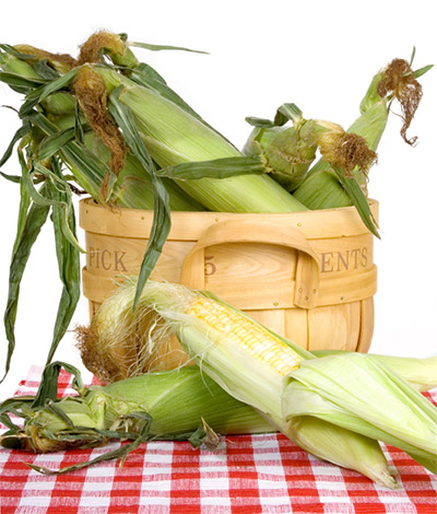 corn-maryland